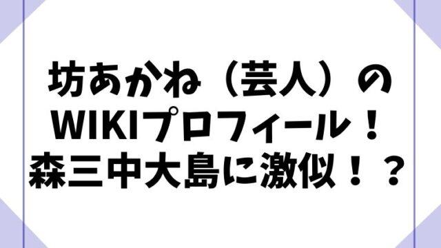 坊あかね(芸人)の年齢などのwikiプロフィール!森三中の大島に激似!?