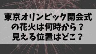 東京オリンピック開会式の花火は何時から?場所はどこで見える位置は?
