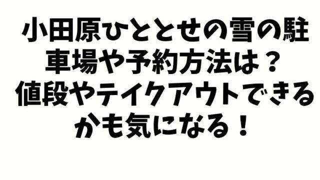 小田原ひととせの雪の駐車場や予約方法は?値段やテイクアウトできるかも気になる!