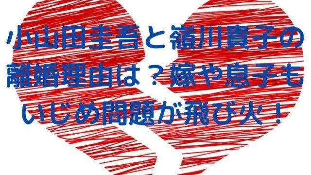 小山田圭吾と嶺川貴子の離婚理由は?嫁や息子もいじめ問題が飛び火!