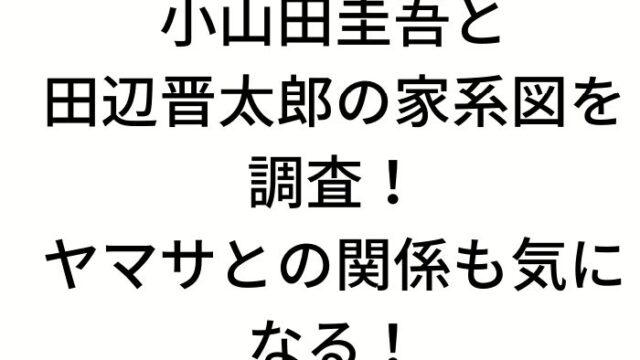 小山田圭吾と田辺晋太郎の家系図を調査!ヤマサとの関係も気になる!