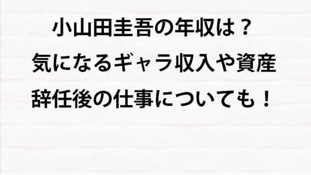 小山田圭吾の年収と資産