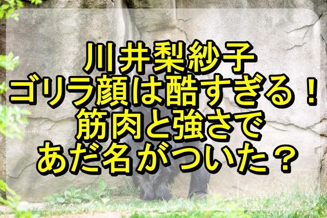 川井梨紗子がゴリラ顔とは酷すぎる!筋肉と強さであだ名がついた?