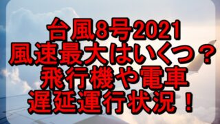 台風8号2021の最大風速はいくつ?飛行機や電車の遅延運行状況!