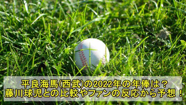 平良海馬(西部)の2022年の年俸は?藤川球児との比較やファンの反応から予想!