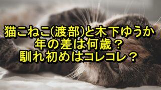 猫こねこ(渡部)と木下ゆうかの年の差は何歳?馴れ初めはコレコレ?