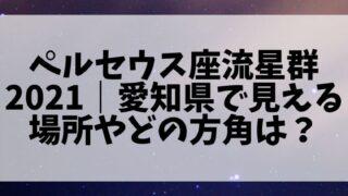 ペルセウス座流星群2021|愛知県で見える場所やどの方角(方向)を向けば良い?