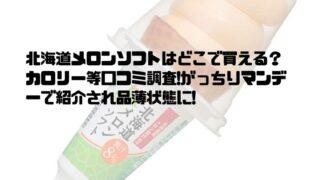 北海道メロンソフトはどこで買える?カロリー等口コミ調査!がっちりマンデーで紹介され品薄状態に!