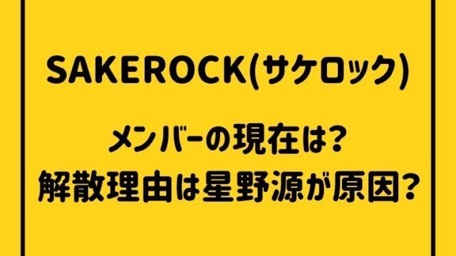 SAKEROCK(サケロック) メンバーは現在何をしてる?解散理由は星野源が原因?