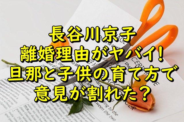 長谷川京子の離婚理由がヤバイ!旦那と子供の育て方で意見が割れた?