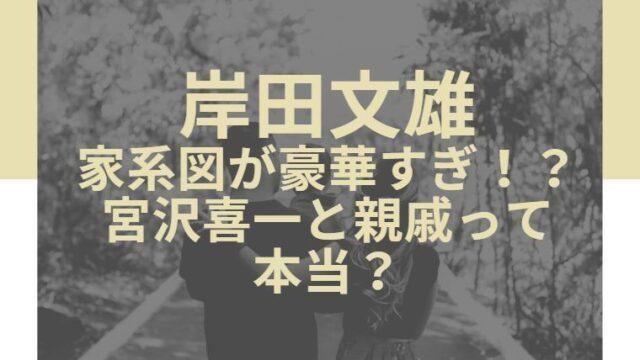 岸田文雄の家系図が豪華すぎ!?宮沢喜一と親戚って本当?