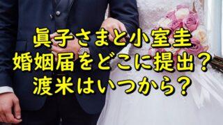 眞子さまと小室圭は婚姻届をどこに提出する?渡米はいつからか調査!